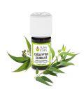 huile essentielle eucalyptus globulus (bio) - 1 kg